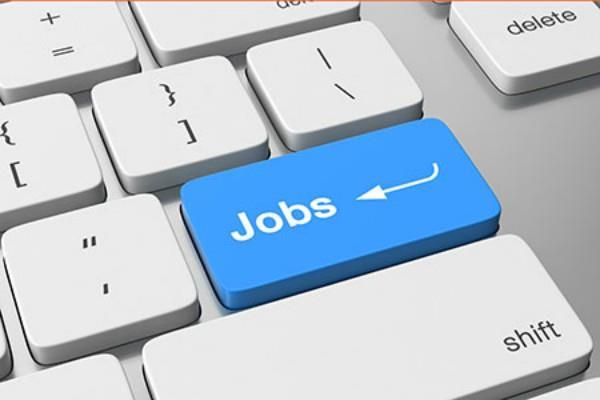 becil delhi job news in hindi rojgar samachar government jobs  employment news