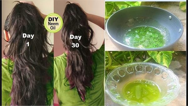 Hair Growth बढ़ाने का बेस्ट फार्मूला, होममेड तेल से बढ़ेंगे दोगुना बाल