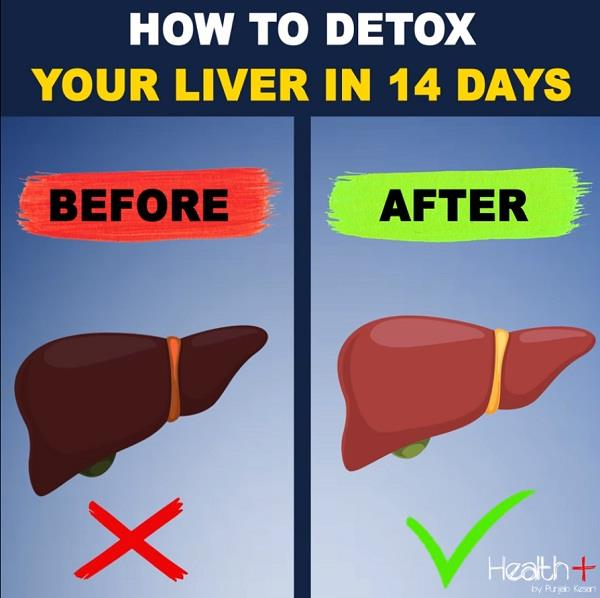 how to detox your liver in 14 days