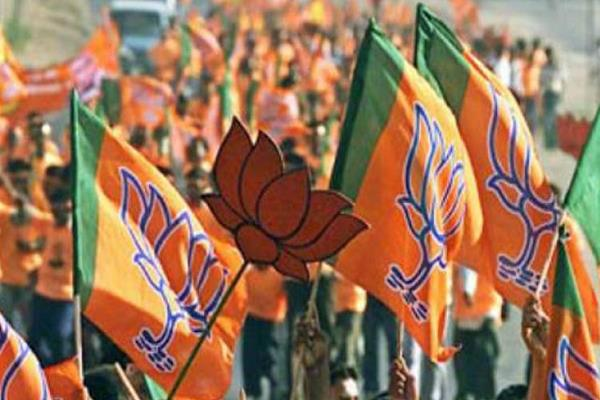 loksabha elections in place of 75 cross leader leaders