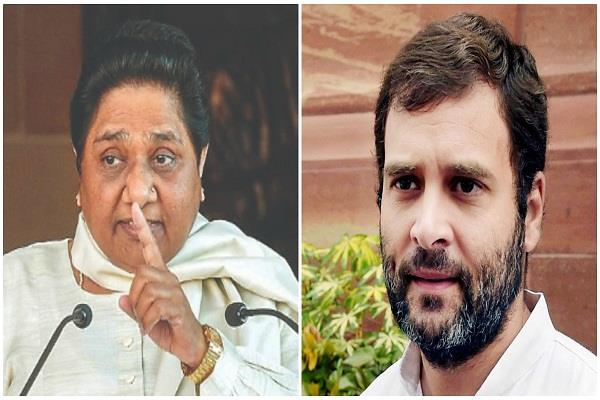 no alliance with congress in any state mayawati