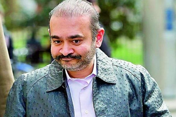 uk court will pronounce judgment on nirav modi