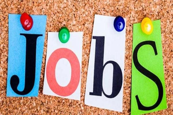 mpidcl jobs salary candidate