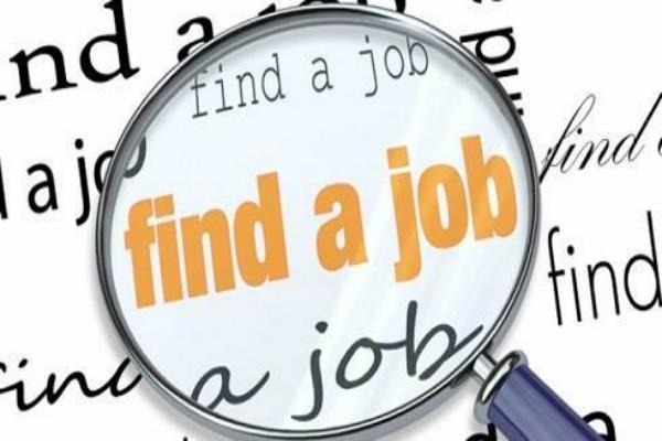 forest department salary job  job news in hindi