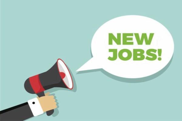 oavs jobs  job news in hindi rojgar samachar government jobs