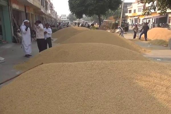case filed against rice millers for scamming 110 million