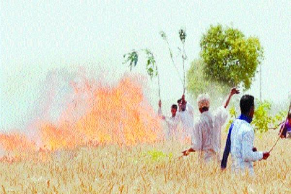 haryana s  disappeared  farmers are in the state