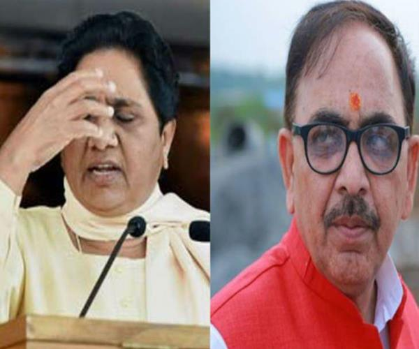 mayawati is trying to defame dalits bjp