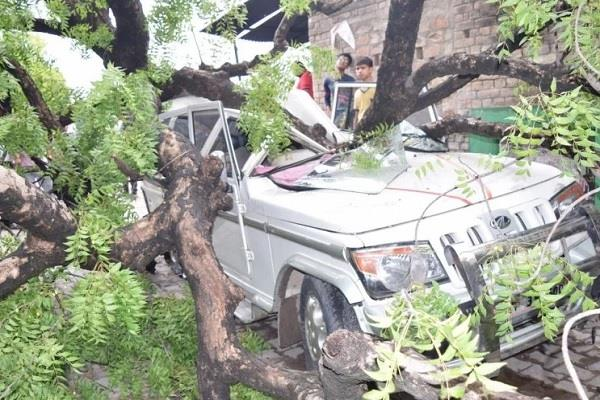 congress leader dead in road accident