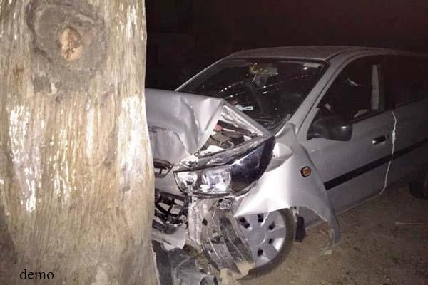 high speed car collides with trees