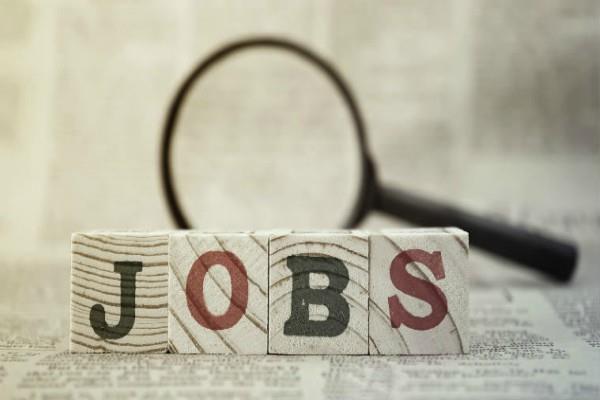 delhi development authority  jobs salary candidate