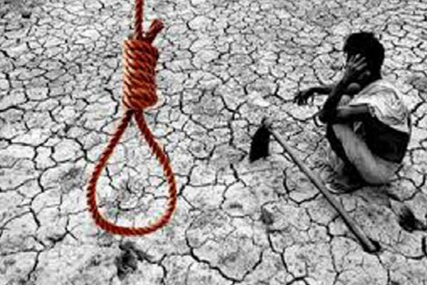 the farmer committed suicide in kamal nath the cause of the problem