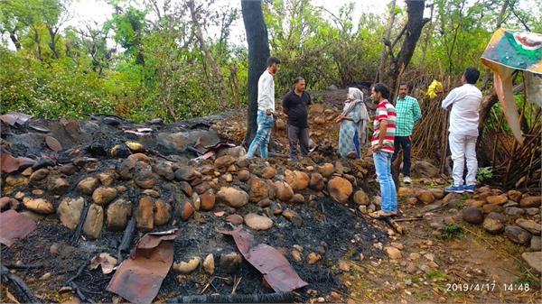 lightning in kathua animal died