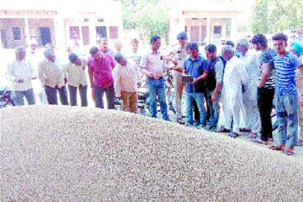 farmers protested if the procurement of wheat