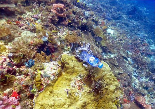 scientists find where does go plastic garbage from indian ocean