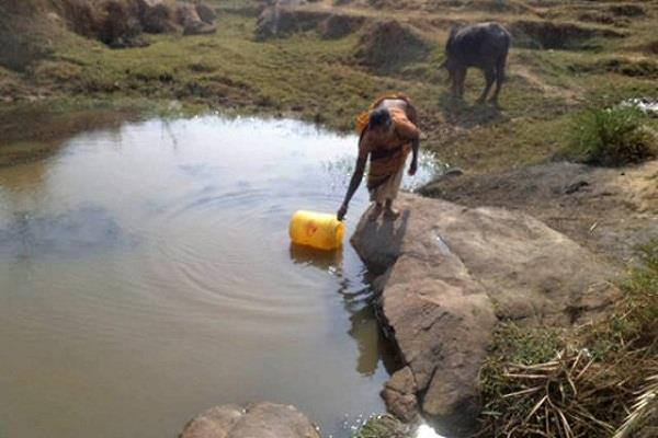 there are still animal and human constrain a place of drinking water