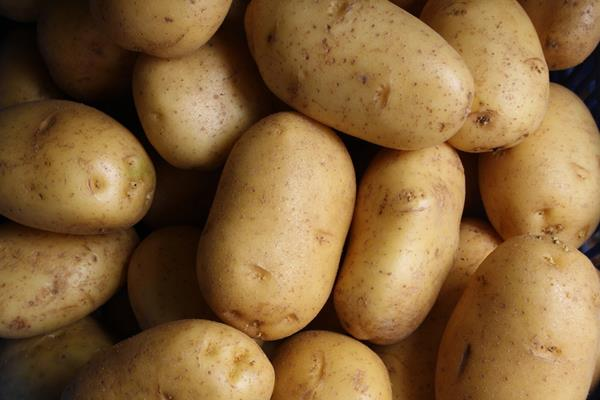 pepsico proposes soft laid back agreement after the case on potato farmers