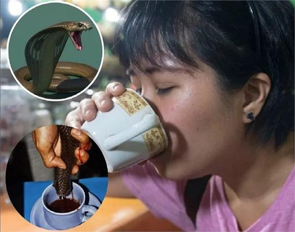 यहां महिलाएं खूबसूरती के लिए चाय-कॉफी की तरह पी रही हैं कोबरे का खून