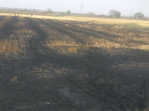 fire in farm on katni