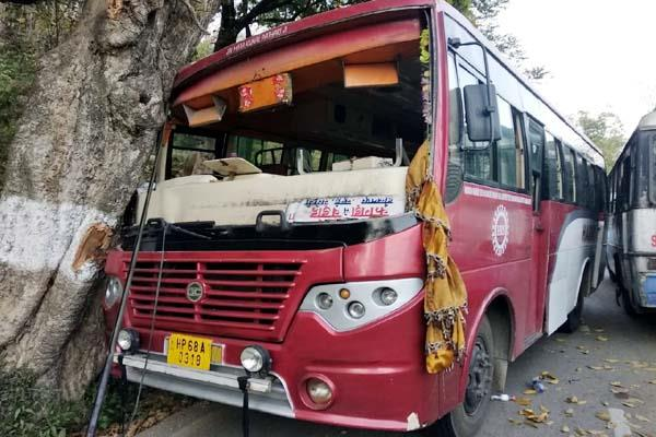 bus collied from tree 10 injured