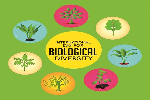 bio diversity protection is essential for a happy life