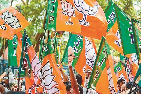 bjp s  pyramid  hinges at party cadre