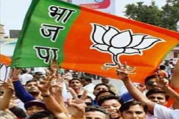 bjp s dominance in 28 seats out of 29 see list