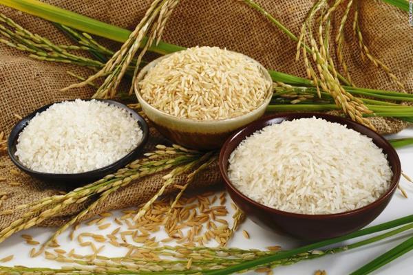 iran ban crisis on rice scheme for oil