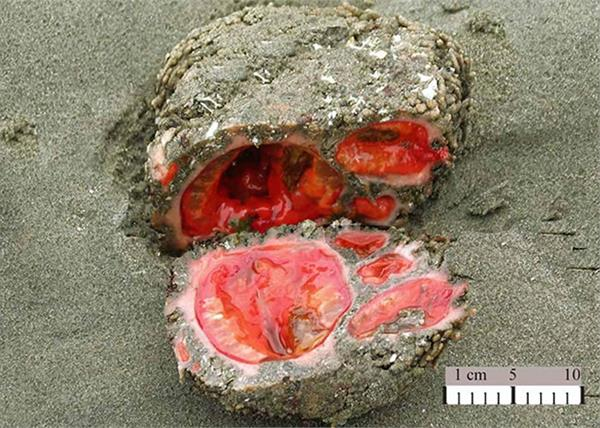 living rock that can be eaten and contains clear blood