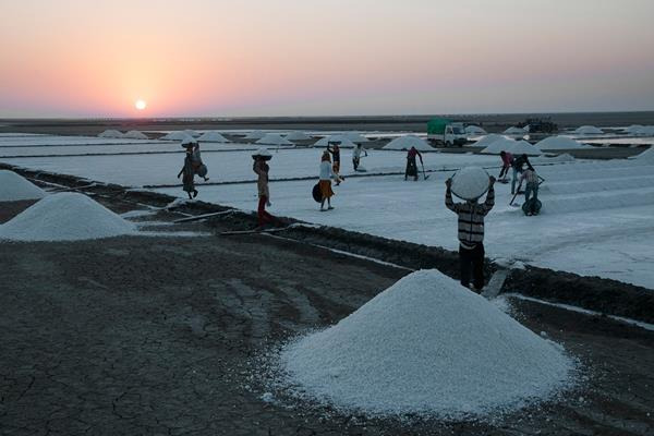 salt demand of gujarat increased due to heavy snowfall in the us and europe