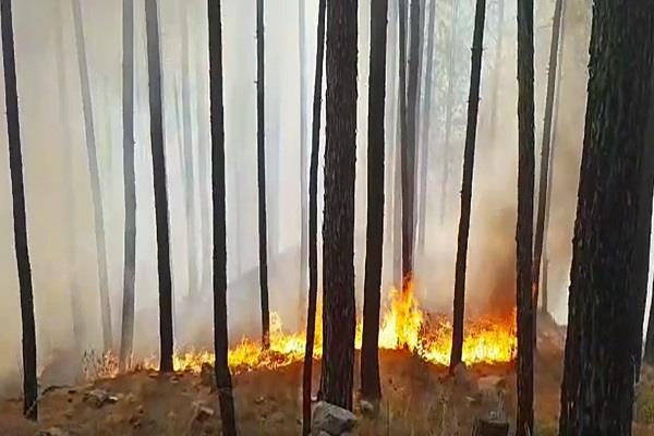the fire broke in the forest of uttarkashi