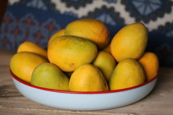 due to counterfeit drugs impoverished mango traded 20 reduction in exports