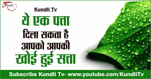 do this remedy of paan leaf