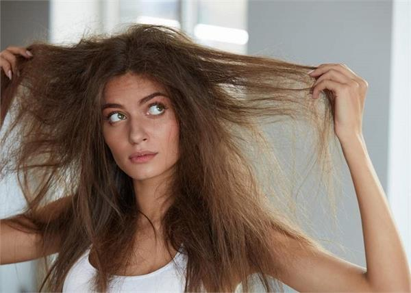 बाल टूटने से परेशान है तो लगाएं ये 3 हेयर मास्क, एक ही बार में दिखेगा फर्क