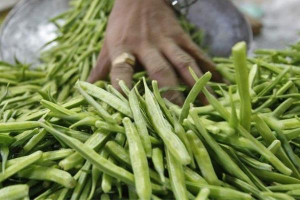 guar gum rise due to export demand