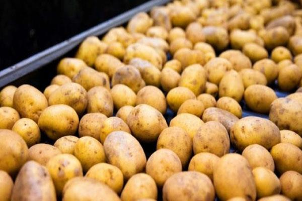 farmers refuse agreement with pepsico