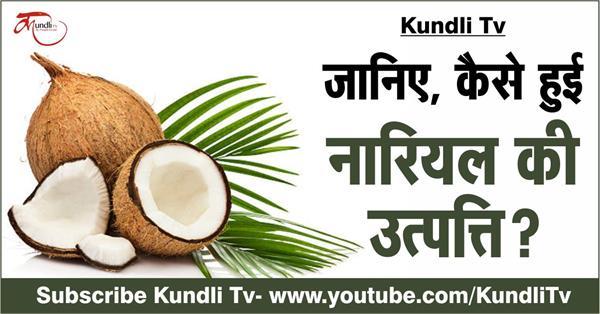 how the origin of coconut