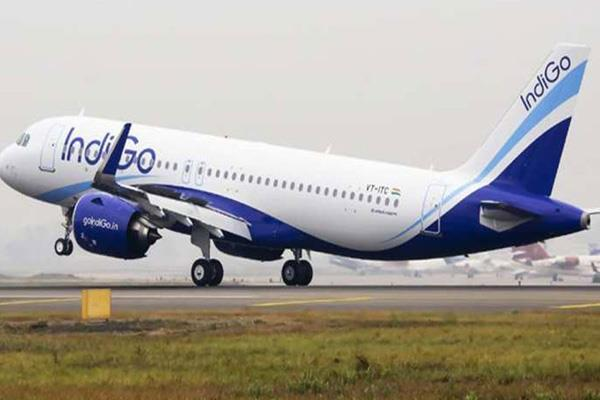 indigo tells the conclusions of change in management