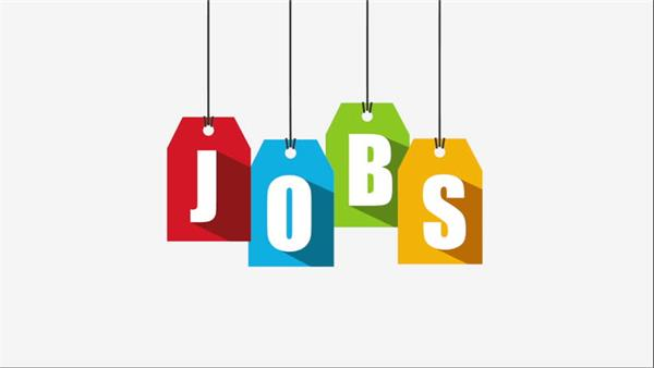 dbsah delhi  job salary candidate