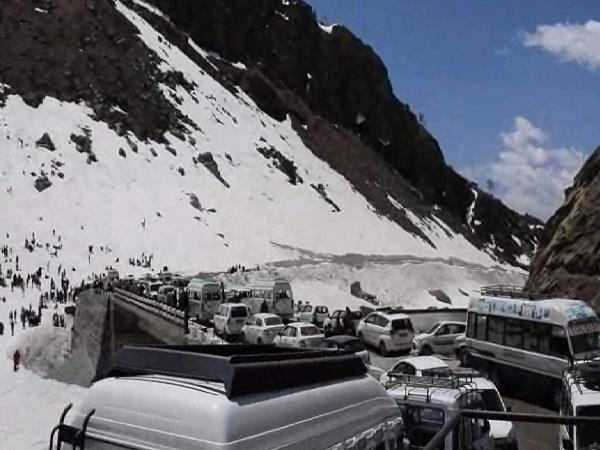 fake permit vehicles to be seized rohtang
