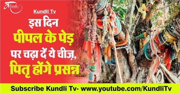jyotish upay of peepal tree in hindi