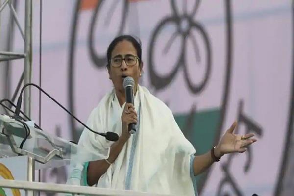 calcutta political step to break vidya sagar s idol mamata protests march