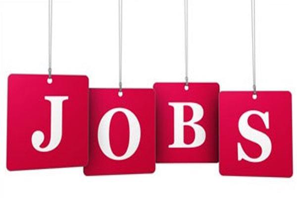 hssc recruitment 2019 graduate 697 posts recruited
