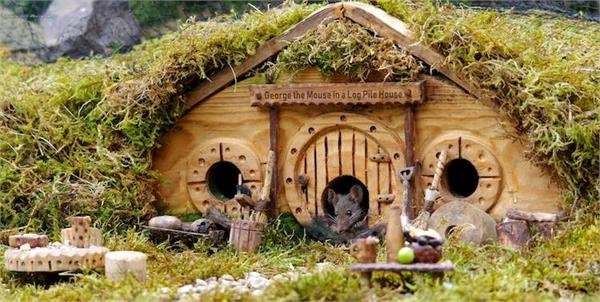 wildlife photographer builds tiny village for mice
