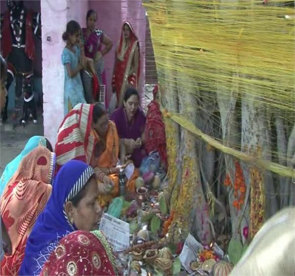 vat savitri fast for the long life of husband