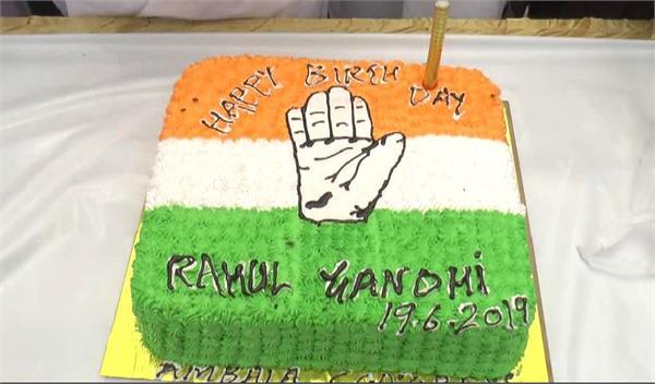 congress workers on katra cake in ambala on rahul gandhi s birthday