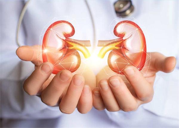 Kidney Stone : तेजी से बढ़ रही है पित्ते और गुर्दें की पथरी की समस्या, यूं करें खुद का बचाव