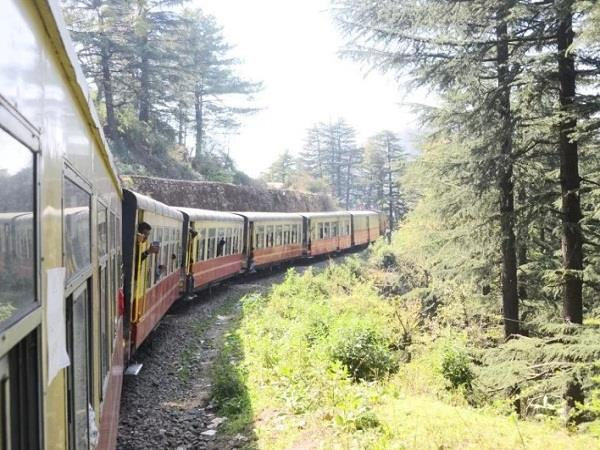 special charted coach train