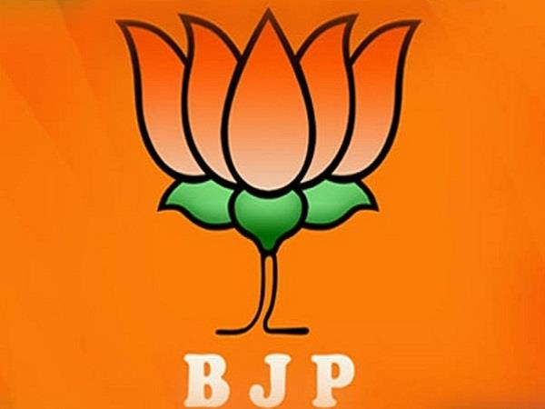 bjp may get new president by august or september