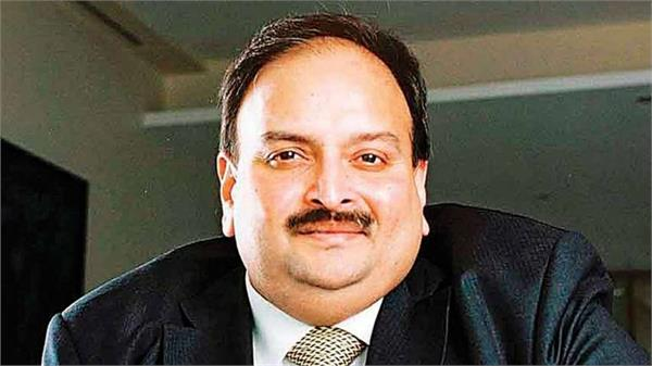 india force to antigua to extradite mehul choksi mea
